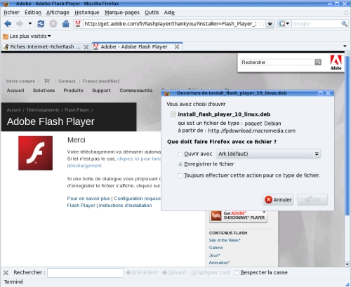 Firefox flash 02.jpg