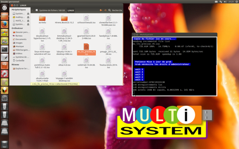 MultiSystem-lts r9 copie.png